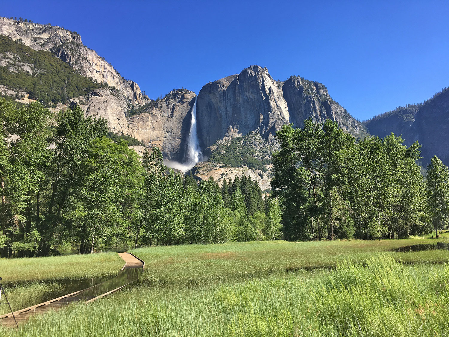 The Yosemite Peregrine Lodge Hikes In Yosemite Valley